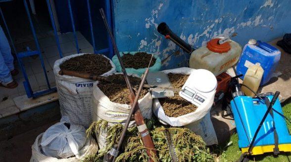 Polícia destrói 700 kg de drogas apreendidas nos últimos dois anos 2