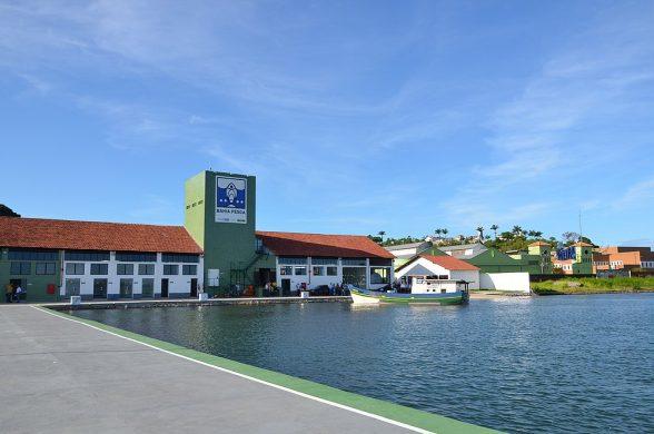 Desembarque de Atum aumentou 550% no Terminal Pesqueiro de Ilhéus 1