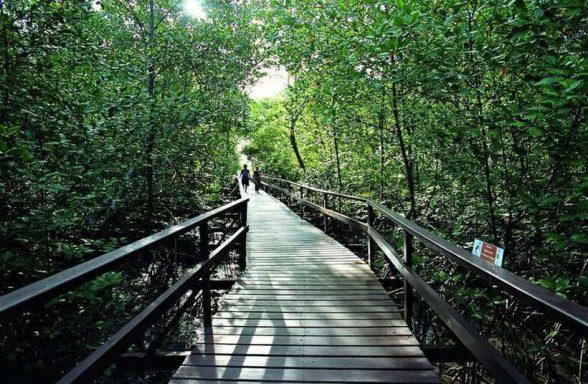Um reinado à beira-mar, conheça a Ilha de Comandatuba 3