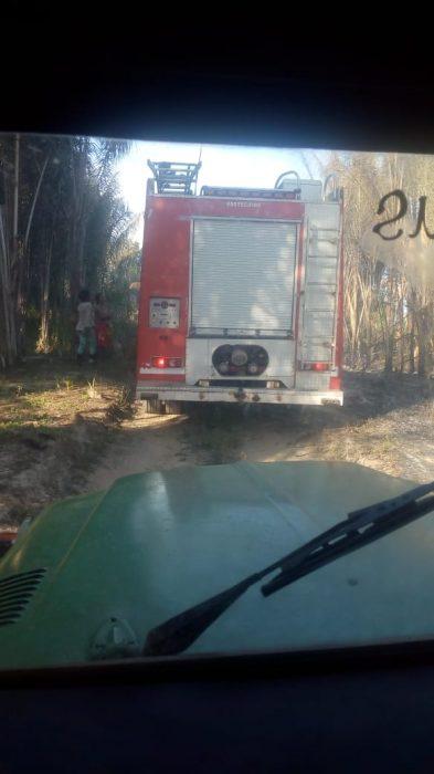 Incêndio destrói vegetação que fica em aldeia indígena de Pau Brasil; Ilhéus registrou ontem (14) incêndio em área indígena 3