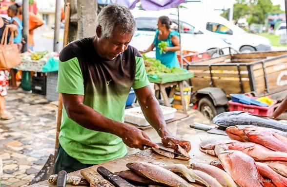 Pescados do litoral baiano não foram contaminados por manchas de óleo, aponta Bahia Pesca 2