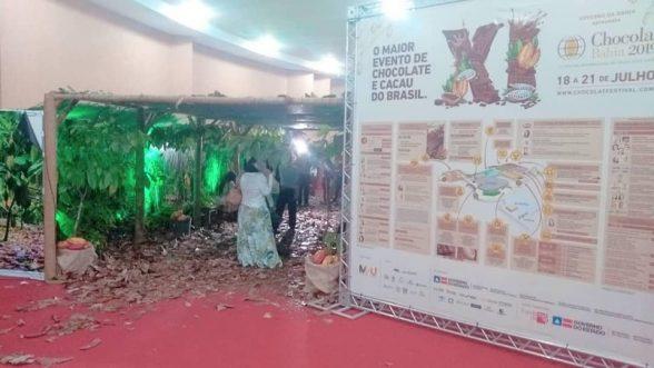 Variedade do cacau e do chocolate paraense desponta em Festival de Chocolate 1