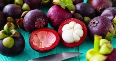 Jovens cientistas desenvolvem método de combate a diabetes com casca de fruta 3