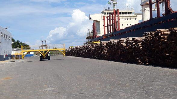 Navio chega ao Porto de Ilhéus para carregar eucalipto in natura para Portugal 3