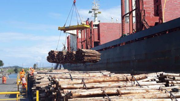 Navio chega ao Porto de Ilhéus para carregar eucalipto in natura para Portugal 1