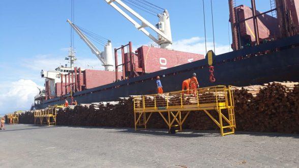 Navio chega ao Porto de Ilhéus para carregar eucalipto in natura para Portugal 2