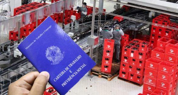 Grupo Petrópolis abriu vaga para vendedor em Itabuna 1