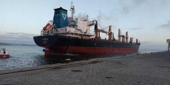 Navio chega ao Porto de Ilhéus para carregar segunda remessa de eucalipto in natura para Portugal 3