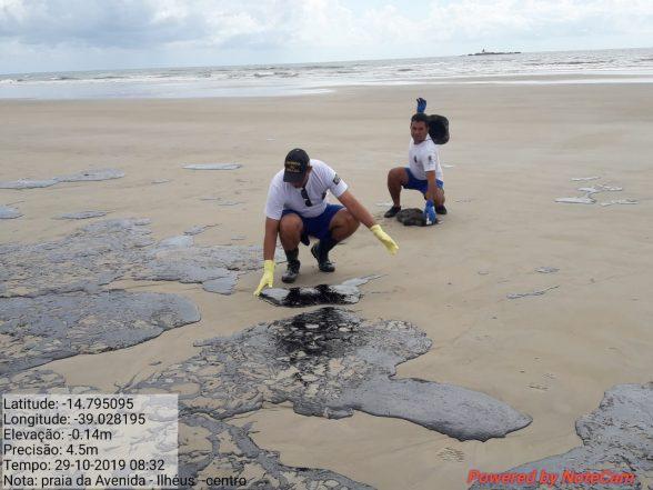 Limpeza das praias de Ilhéus com óleo vazado reúne voluntários 1
