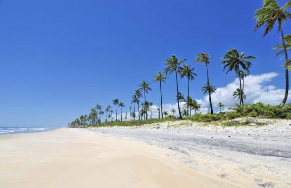 Vila Galé cancela construção de resort em área indígena no sul da Bahia 7